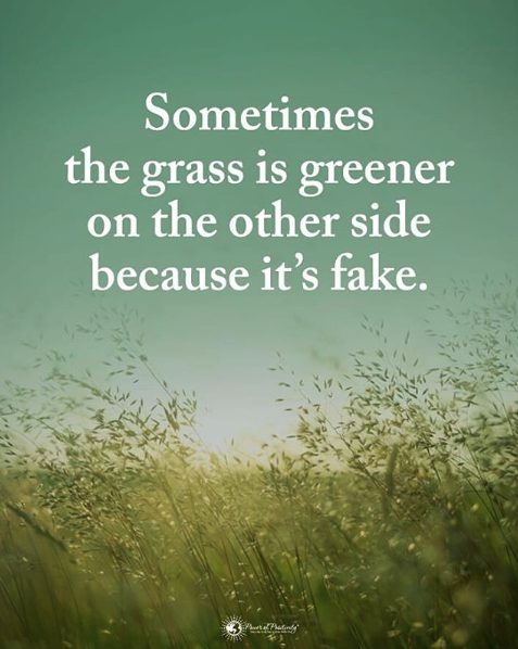 positive daily intention greener grass